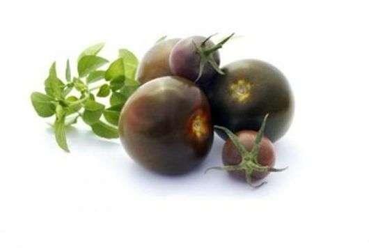 Сорт томатов «Сахар коричневый»