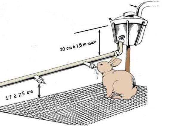 Видео кормушки и поилки для кроликов своими руками