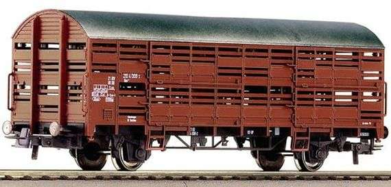 Правила перевозки свиней